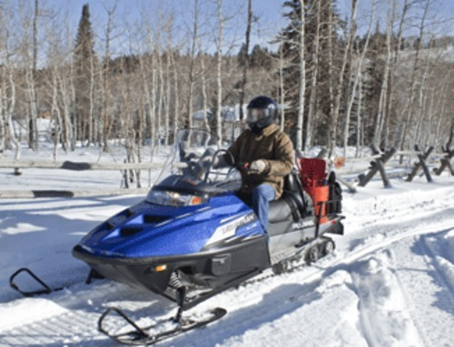 Pay for  Polaris Snowmobile 2007-2013 Edge/Widetrak LX Repair Manual