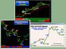 Thumbnail Ultra Fast Profit + Forex Ultra Scalper + Forex Octopus