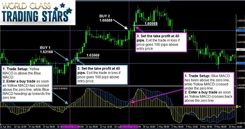 Forex egypt courses