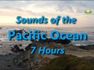Thumbnail Pacific Ocean Natural Ambient Sound Seven Hours