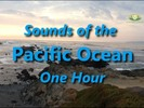 Thumbnail Pacific Ocean Natural Ambient Sound One Hour