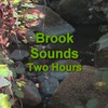 Thumbnail Brook Sounds Ambient Nature Sound Two Hours