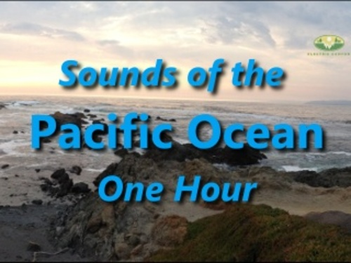 Pacific Ocean Natural Ambient Sound One Hour