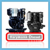 Thumbnail FARYMANN DIESEL K A L R S WORKSHOP SERVICE REPAIR MANUAL