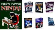 Thumbnail Website Flipping Ninjas With PLR + Lots Of Bonuses