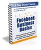 Thumbnail Facebook Business Basics 5 Day Crash Course w PLR