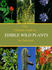 Thumbnail The Ultimate Guide To Edible Wild Plants For Survival