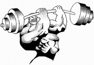 Pay for Body Building Guide: BODYBUILDING PDF BOOK