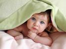 Thumbnail 780 Babies Articles - High Quality Articles - PLR