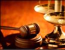 Thumbnail 260 Legal Articles - High Quality Articles - PLR