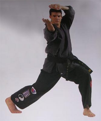 Pay for 175 Martial Arts Articles - High Quality Articles - PLR
