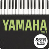 Thumbnail The best mexican, Yamaha Styles Vol. 2