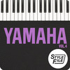 Thumbnail The best mexican, Yamaha Styles Vol. 4