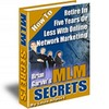 Thumbnail HOW TO RETIRE IN FIVE YEARS OR LESS WITH ONLINE NETWORK - BRIAN GARVINS MLM SECRETS + RESELL RIGHTS!!!