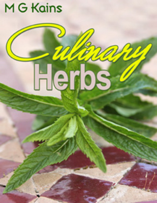 Pay for *NEW VERSION* Culinary Herbs