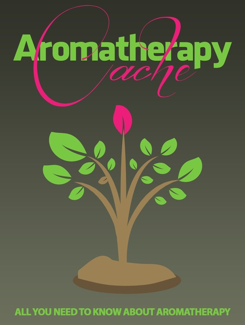 Pay for Aromatherapy Cache: All You Need to Know About Aromatherapy