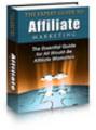 Thumbnail The Expert Guide to  Affiliate Marketing - plr+bonus