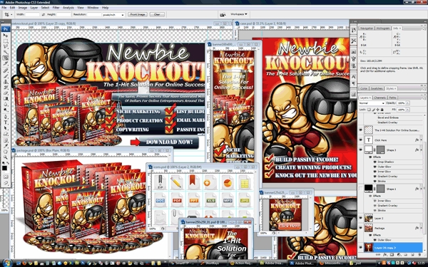 Pay for Minisite Template PSD Graphic - Newbie Knockout
