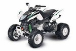 Thumbnail 2010 ARCTIC CAT 300 Utility / DVX 300 ATV SERVICE & REPAIR MANUAL - DOWNLOAD!