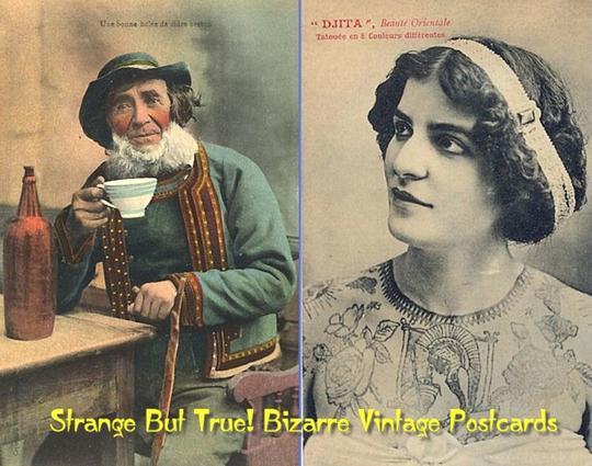 Free Strange But True! Bizarre Vintage Postcards (PDF ebook album) Download thumbnail