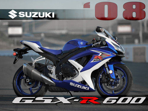 Free Suzuki GSX-R 600 2008-2010 Service Manual Download thumbnail