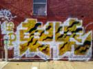 Thumbnail Tiger Print Graffiti