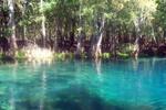 Thumbnail Little River Springs, FL.
