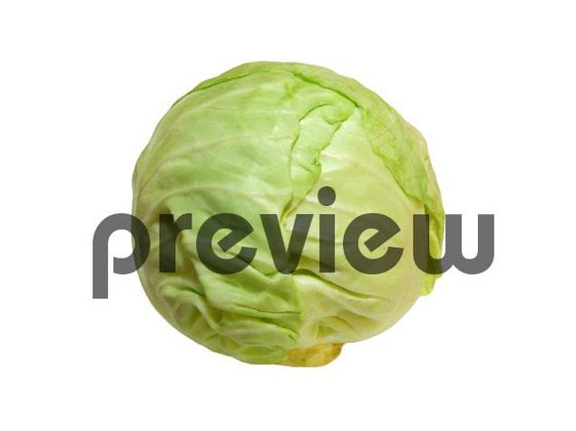 Pay for Cabbage Stock Photo - Royalty Free Image