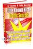Thumbnail Little Known Niche Traffic Secrets