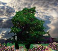 Thumbnail Fantasy Tree Image with Reselling Rights
