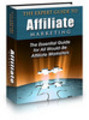 Thumbnail The Expert Guide to Affiliate Marketing With Plr