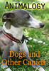 Thumbnail Animalogy: Dogs and Other Canids - Bassam Imam