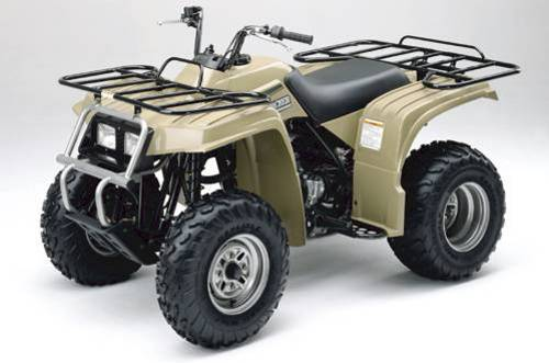 110419532_beartracker_1 yamaha bear tracker service manual 1999 2000 2001 2002 2003 2004 20 yamaha bear tracker 250 wiring diagram at bayanpartner.co
