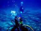 Thumbnail Deep Sea Diving Career