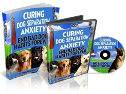 Pay for Curing Dog Separation Anxiety Private Label Rights