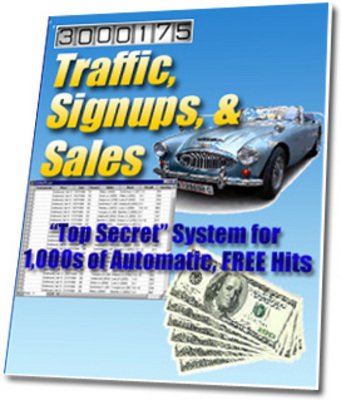 Pay for Use Traffic, Sign ups and Sales To Succeed Online