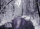 Thumbnail Puzzle Mania - Winter Beauty