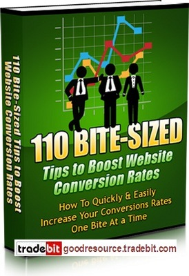 Pay for *New* 110 Bit Sized Tips to Boost Website Conversion Rate