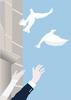 Thumbnail wedding party - flying white doves