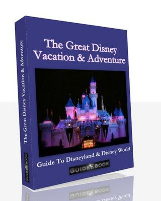 Pay for The Great Disney Vacation & Adventure