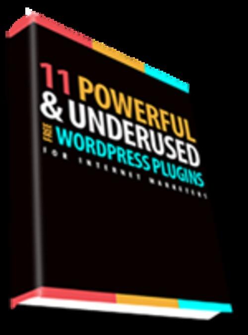 Thumbnail 11 Powerful Wordpress Plugins For Internet Marketers