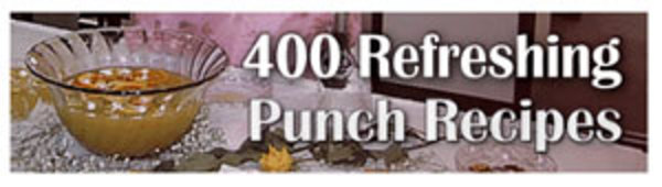 Pay for 400 Refreshing Punch Recipes Ebook Resell