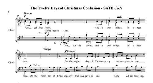 Cool 12 Days Of Christmas Confusion For Satb A Cappella Chorus Pligg Easy Diy Christmas Decorations Tissureus