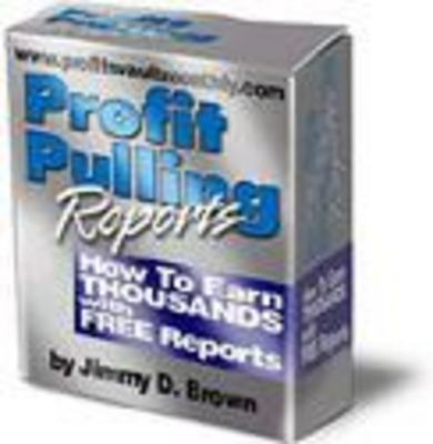 Pay for Profit Pulling Reports