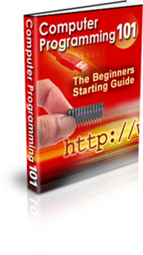 Pay for Computer Programming 101 The Beginners Starting Guide Learn