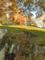 Thumbnail landscape