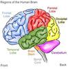 Thumbnail Brain Workshop pc game