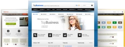 Pay for Premium $85 Wordpress Theme