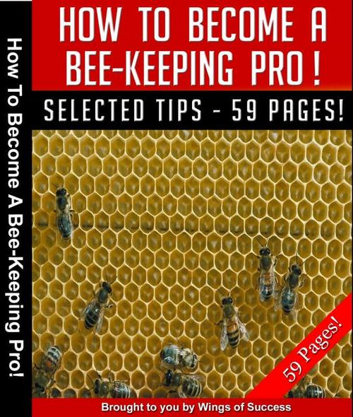 Pay for How to Become A Bee-Keeping Pro