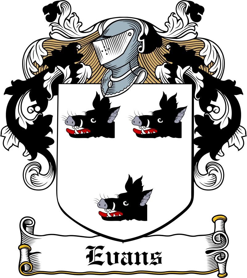 Thumbnail Evans Family Crest / Irish Coat of Arms Image Download